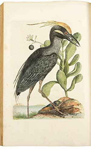 The Natural History of Carolina, Florida, and the Bahama Islands: containing the figures of birds...