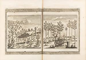 A Philosophical Treatise on Husbandry and Gardening: being a new method of cultivating and increa...