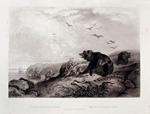 Hunting of the Grizzly Bear: BODMER, Karl (1809-1893)