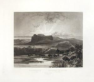 Herd of Bisons on the upper Missouri: BODMER, Karl (1809-1893)