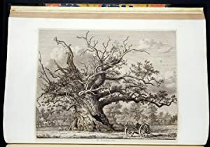Sylva Britannica; or, Portraits of Forest Trees distinguished for their Antiquity, Magnitude, or ...