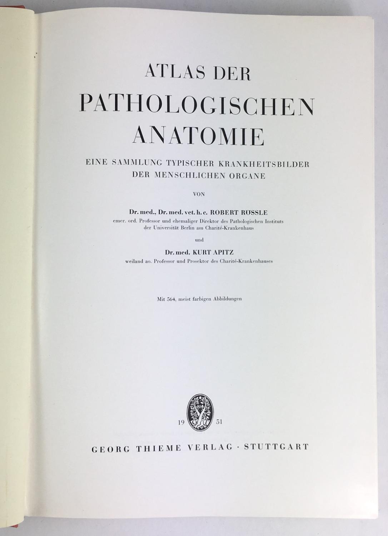 atlas der menschlichen anatomie - ZVAB