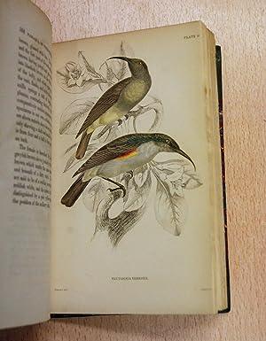 The Natural History of Nectariniadae or Sun-Birds: Jardine, William