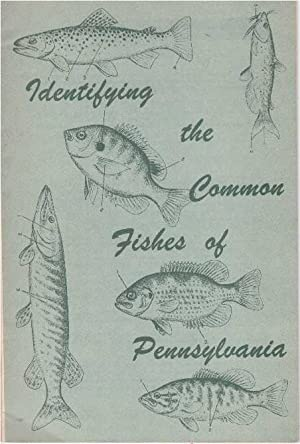 IDENTIFYING THE COMMON FISHES OF PENNSYLVANIA: Buss, Keen and