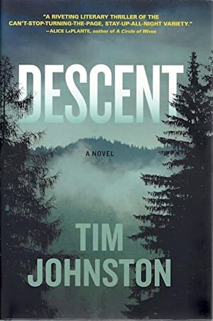 Descent: A Novel: Johnston, Tim