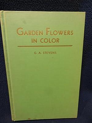 Garden Flowers In Color: G.A. Stevens