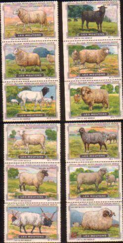 Les Moutons. Serie XVI. Komplette Serie mit: Peter, Cailler, Kohler,