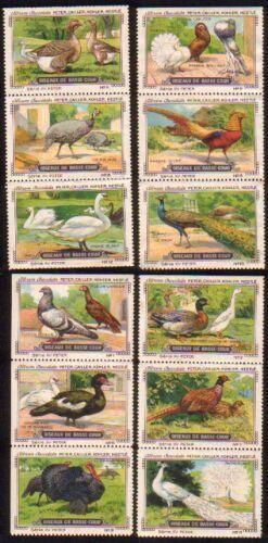 Oiseaux de basse-cour. Serie XV. Komplette Serie: Peter, Cailler, Kohler,
