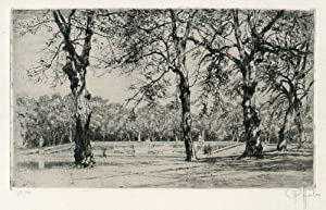 Peter Von Halm Signed Etching of Trees