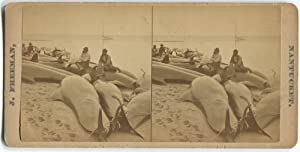 Whaling Stereoview by Freeman of Nantucket