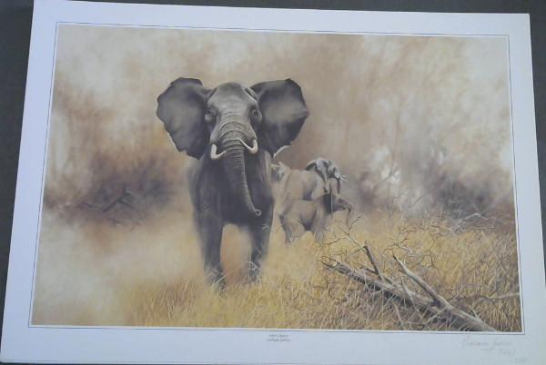 """Wild Life Prints : Graham Jahme : """"""""The Bluff"""""""", """"""""Mock Charge"""""""" - Limited"""