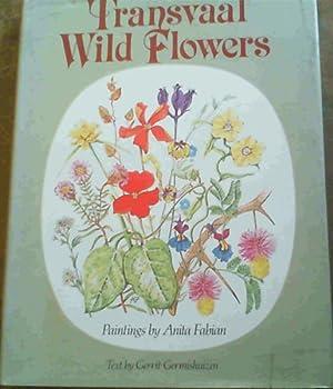 Transvaal Wild Flowers: Fabian, Anita :