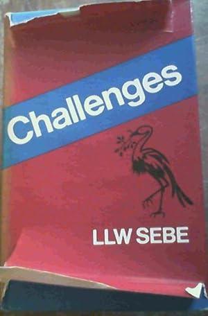 Challenges: Sebe, L. L.