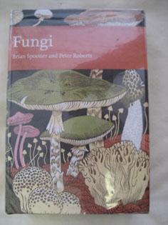 Fungi: SPOONER, Brian and