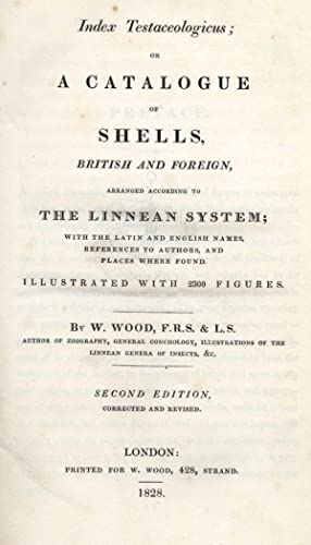 Index Testaceologicus; or A Catalogue of Shells,: WOOD, W.