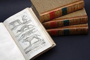 Le Règne Animal distribué d'après son Organisation,: CUVIER, Baron Georges