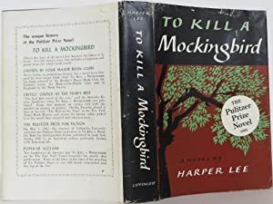 the socio political issues in to kill a mockingbird by harper lee The plot and characters of to kill a mockingbird are loosely based on lee issues both personal and political mockingbird next door: life with harper lee.