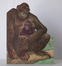 Gambie Gorilla: Ross, Roselle