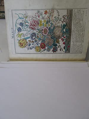 THE FLOWER GARDEN DISPLAY'D IN ABOVE (sic) FOUR HUNDRED CURIOUS REPRESENTATIONS OF THE MOST ...