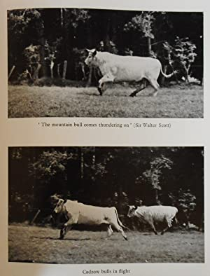The Ancient White Cattle Of Britain And Their Descendants: WHITEHEAD G.Kenneth