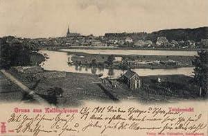 Gruss aus Kellinghusen. Totalansicht. Ansichtskarte in Lichtdruck.: Kellinghusen -