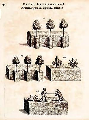 Horticultura, Iibris II compre hensa; huic coelo: LAUREMBERG, Peter. A