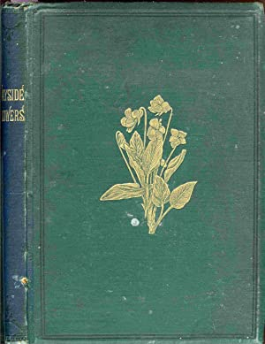 Wayside Flowers. Chromolithographed By L. Prang &: Meehan, Thomas
