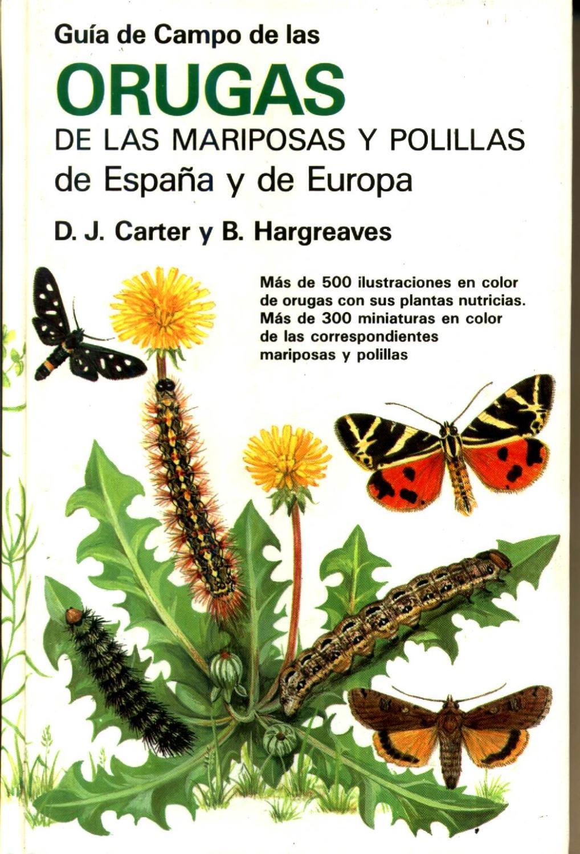 Guía de campo de orugas, mariposas y polillas de España y Europa - CARTER