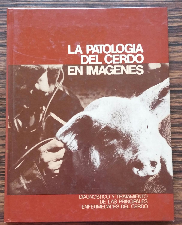 La patologia porcina en imagenes - Lazaro