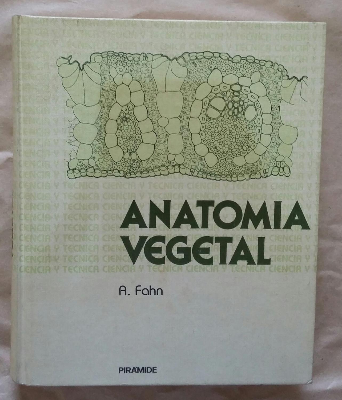 Anatomía Vegetal - AbeBooks