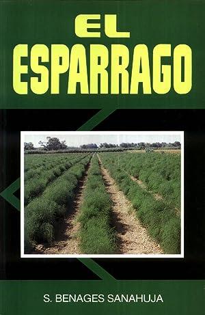 El Esparrago: BENAGES