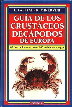 Guia de los Crustaceos Decapodos de Europa: FALCIAI