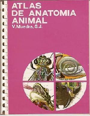 Atlas de Anatomia Animal: V. Muedra, S.J.