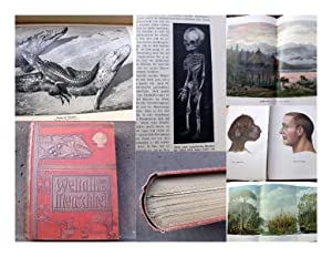 Weltall und Menschheit. Geschichte der Erforschung der: Kraemer, Hans (Hrsg.)
