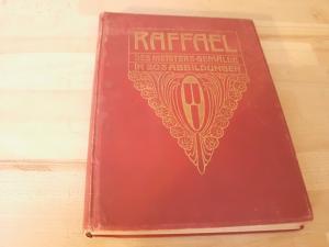 Raffael. Des Meisters Gemälde in 203 Abbildungen.