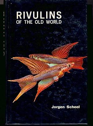 Rivulins of the Old World: Scheel, Joegen
