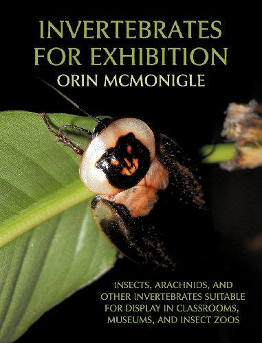 Invertebrates for Exhibition: Insects, Arachnids and other: McMonigle, O.