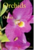 Orchids of Orissa - Misra, S.