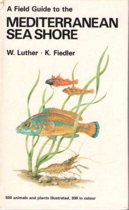 A Field Guide to the Mediterranean Sea: Luther, W.; Fiedler,
