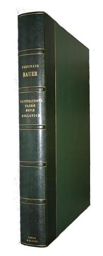 Illustrationes florae Novae Hollandiae sive icones generum.: Bauer, Ferdinand Lukas