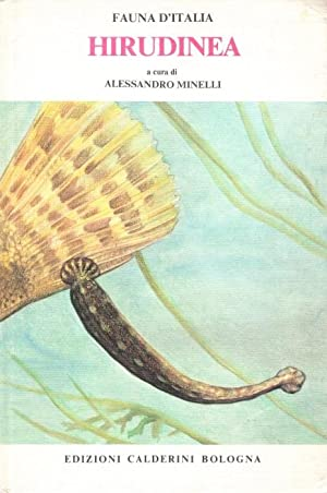 Hirudinea Fauna d'Italia 15: Minelli, A.