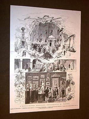 L'Esposizione agricola industriale di Faenza nel 1875