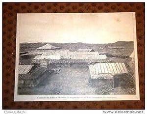 Colonia Eritrea in Massaua o Massawa Il