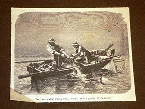 Pescatori Pesca di una Sciena