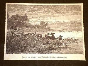 La caccia al cervo