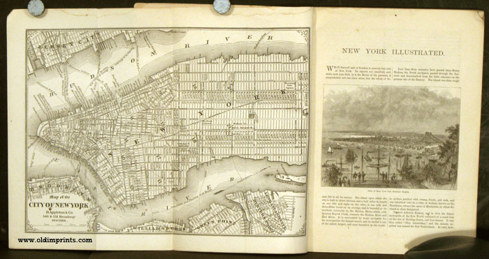 New York Illustrated. NEW YORK - NEW YORK CITY) Softcover