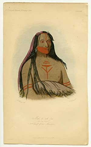 Mah-to-toh-pa. The Four Bears. 2nd Chief of: NORTH AMERICAN INDIANS