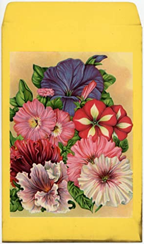 Mixed flower seed packet (UNUSED without seeds).