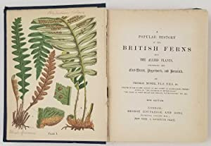 A Popular History of British Ferns and: FERNS) Moore, Thomas.