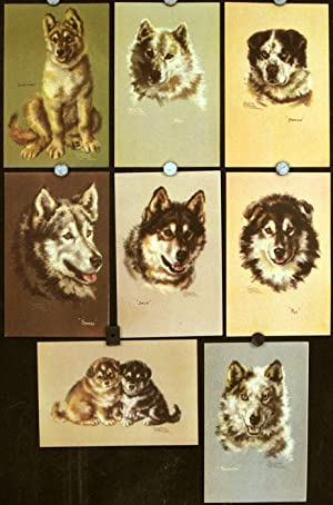 Nine Alaska Steamship Company Menus with portraits of Huskies.